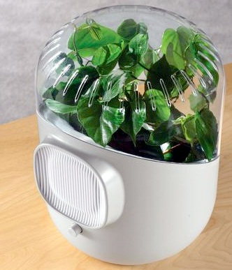 The Only Botanical Air Purifier