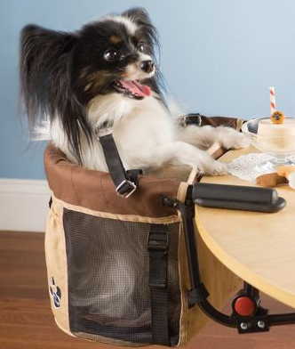 The Pet High Chair, available at Hammacher Schlemmer