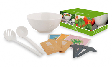 Salad Set -- Fifty dollar salad-in-a-box