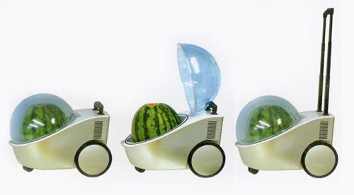 Joybond Watermelon Cooler Marugoto Tamachan