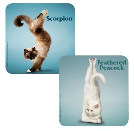 Yoga Cats Pub Coasters