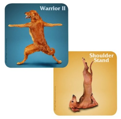 Yoga Dogs Pub Coasters