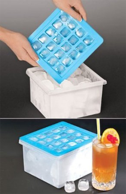 Ice Cube Tray With Storage Container Bin by MTR INC