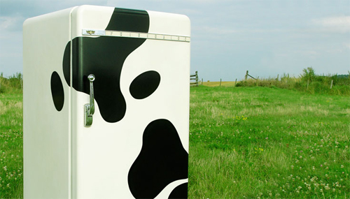 Atypyk Cowstick cow stickers for the kitchen.